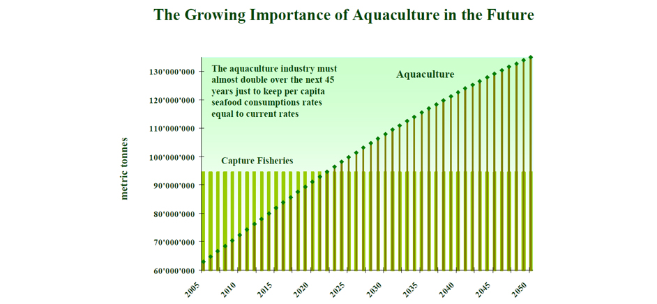 Aquaculture Investment Advisory Services