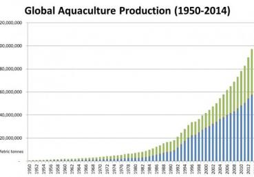 an analysis of the economics of aquaculture in the united states Applied aquaculture research and technology transfer at usda has improved the international competitiveness and sustainability of us aquaculture and reduced the dependency on imported seafood and threatened ocean fisheries usda also provides aquaculture data and statistics, monitoring, and resources.